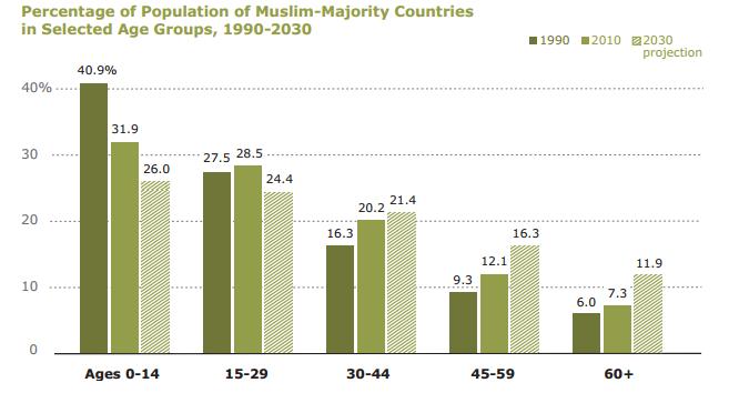 イスラム圏の年齢比グラフ